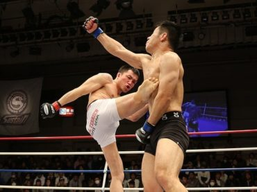 A Beginner's Guide to MMA