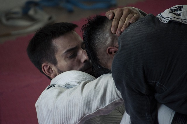 What does BJJ training involve?