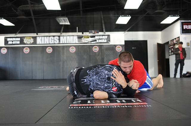 The techniques used in BJJ