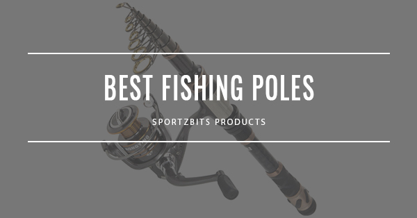 Best Fishing Poles And Whips